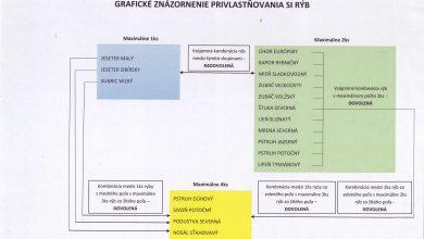 Photo of Pomôcka k Vyhláške k privlastňovaniu úlovkov